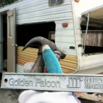 Dismantling The Old Travel Trailer For Tiny Home Build Chop Wood
