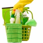 Eco Friendly Cleaning Products For Your Green Home Diary