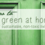 Going Green Home Ideas For Healthier Sustainable Living
