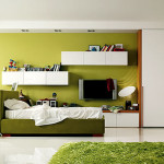 Green Furniture And Bedroom Ideas For Teenage