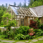 Green Homes Easy Ways