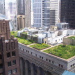Green Roofs Enviro And Mental Benefits Our Home