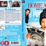 Home Alone Lost New York Customcovers