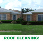 Home Eric Hardman Roof Cleaning Services
