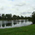 Homes For Sale Russell Oaks Lake Asbury Green Cove Springs