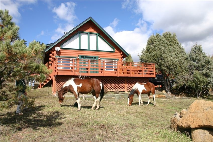 House Beautiful Log Home Five Acres Horse Facilities