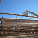 Log Home Building The Butt And Pass Way Ridge Pole