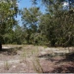 Mobile Home Single Residential Vacant Land Dunnellon
