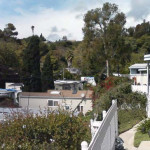 Mobile Homes Nestle The Trees And Shrubs Paradise Cove Lower