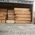Offer Kiln Dried Logs And Air Surface