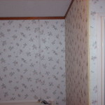 Painting Vinyl Walls Manufactured Homes Forum Gardenweb