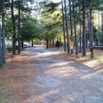 Pecan Grove Mobile Home Park For Sale Oglethorpe