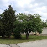 Pine Grove Monarch Manufactured Home For Sale York