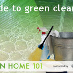 Premier Eco Cleaners Offices Leading Brand Greenearth Technology