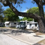 Sunny Pines Mhp Mobile Home Park For Sale Mount Dora