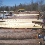 The Logs Used Heartwood Log Homes