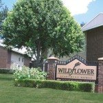 Wildflower Apartments For Rent Midland Apartment