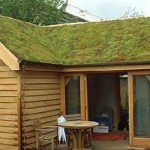 Your Home Green Looks From Greenroof