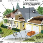 Build Green Home
