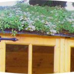 Green Roofs Insulate Against Heat And Cold
