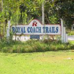 Royal Coach