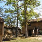 Tour Country Club Woods Apartment Homes Mobile