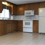 Kitchen Cabinets Mobile Homes Need Help Painting
